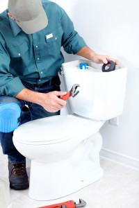 Toilet Repair Maineville